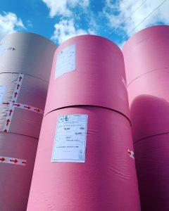 tovagliette rosa monouso riciclabili